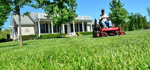 Jak vybrat zahradní traktor?
