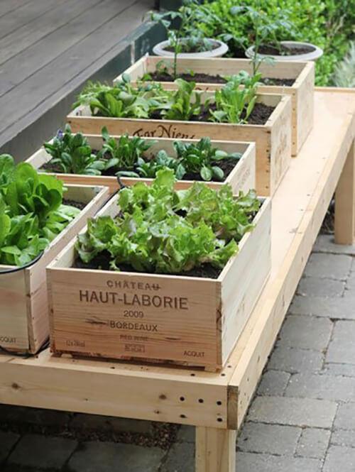 Dřevné bedýnky na pěstování bylinek a zeleniny