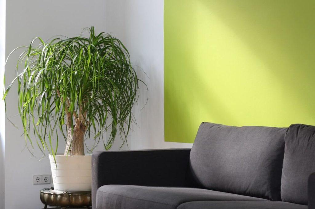 Zelený obývací pokoj