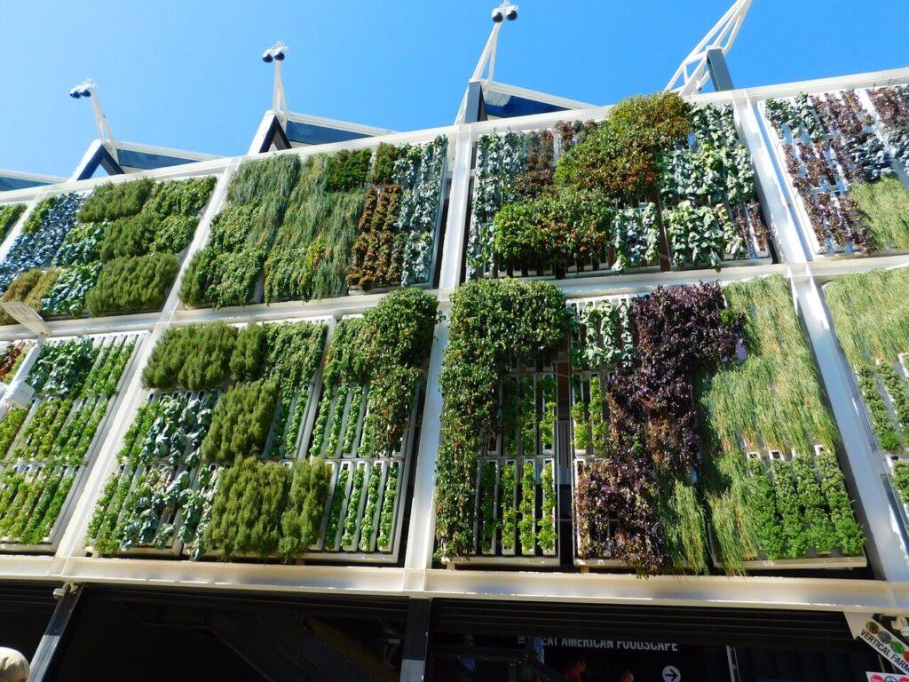Vertikální zahrada - exteriér