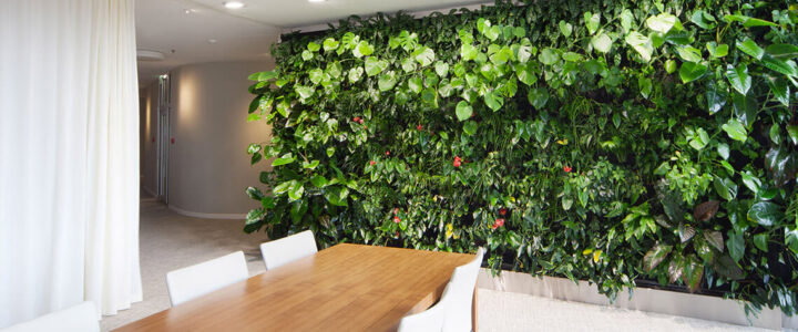 Vertikální zahrada v bytě